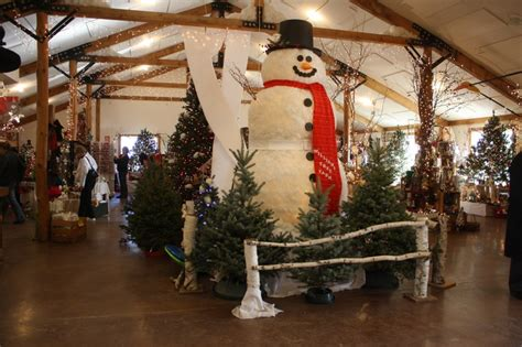 old wooden framed snowman wrapped in chicken wire