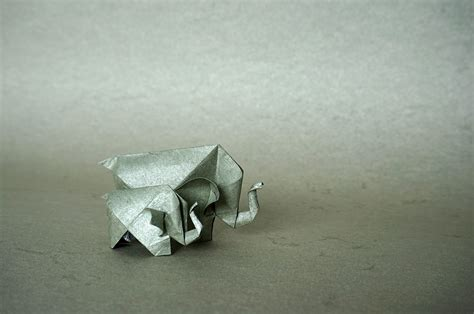 Origami Family - 31 origami elephants to fold for the elephantorigamichallenge