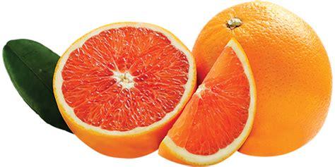 cara cara cara cara summer citrus