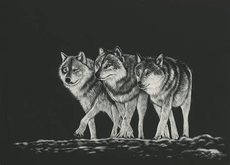 imagenes en blanco para fondo de pantalla fondos de pantalla lobo dibujado tres 3 en blanco y negro