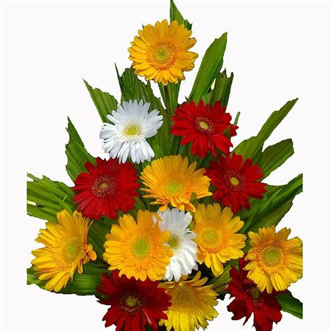 Order Flowers by Flower Delivery In Bangalore Rojalin91