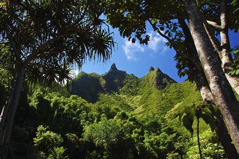 National Botanical Garden Kauai by Panoramio Photo Of Limahuli Garden National Tropical