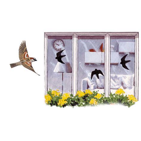 Fenster Aufkleber Online vogel aufkleber f 252 r fensterscheiben online kaufen bei