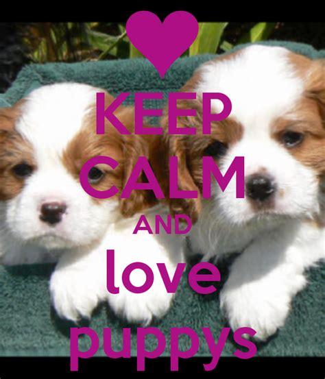 Cute Mugs by Keep Calm And Love Puppys Poster Bbm Lover Keep Calm O