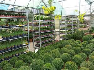 Plantas Grandes De Interior