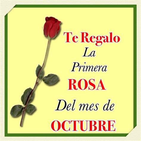 imagenes octubre mes rosa te regalo la primera rosa del mes de octubre imagen 7382