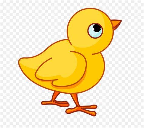 clipart neonato pollo neonato madre clip pulcino giallo scaricare