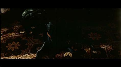 il gattopardo italian edition dvd compare il gattopardo