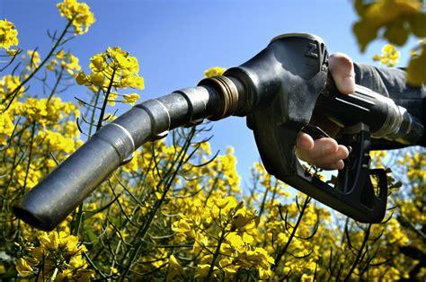 Target Mirrors Eu To Cap Biofuel Target To Protect Food