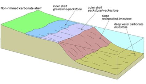 Outer Shelf by Carbonate Platforms Learning Geology