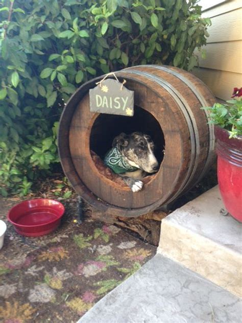 wine barrel dog house 7 best images about dog house ideas on pinterest home