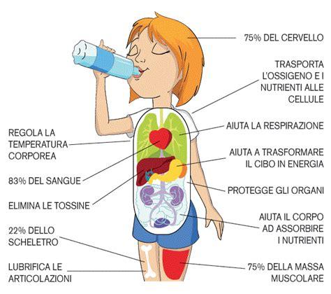 alimenti brucia grassi addome i benefici dell acqua poliambulatorio oberdan