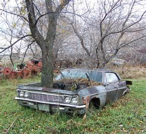 the 102 best images about cars abandoned on trees on