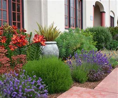 piante da mettere in giardino giardino