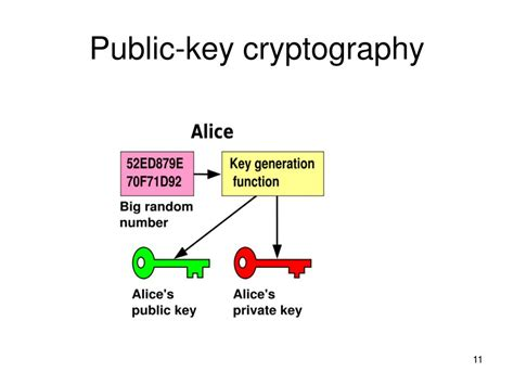 public key encryption wowgirls nekane dominique modernist cuisine the art and