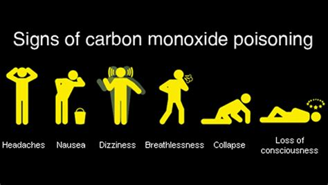 Carbon Monoxide Poisoning From Fireplace illinois premise alert program lake protection district