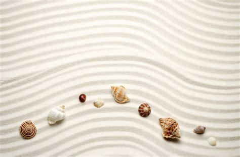 sand sea shell wallpaper 5 responsive