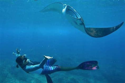 snorkelling day trip  bali  nusa lembongan