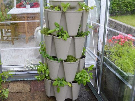 Growing Herbs In Planters by Grow A Vertical Herb Garden In A Greenstalk Planter