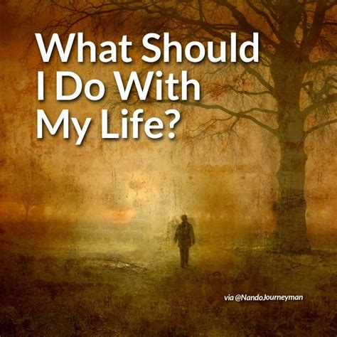 what should i do with my life the true story of people who answered the ultimate question ebook what should i do with my life nandojourneyman