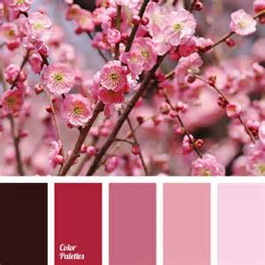 cherry blossom color delicate shades of cherry blossoms color palette ideas