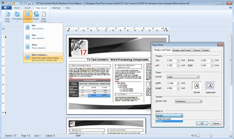 Document Sections by Tx Text Net For Windows Forms Enterprise Features