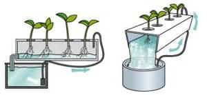 AQUAfarm   Autopot   DIY Bubbler Systems   DIY Self Watering Pots