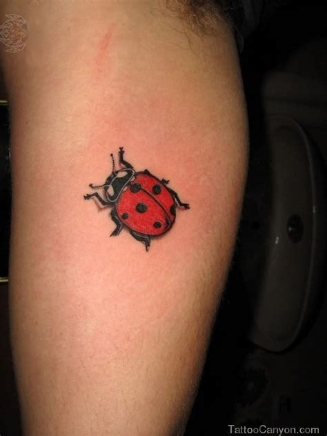 tiny ladybug tattoo design on heel real photo pictures