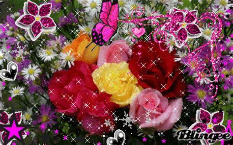 imagenes de flores lindas animadas imagem de rosas 89791352 blingee com