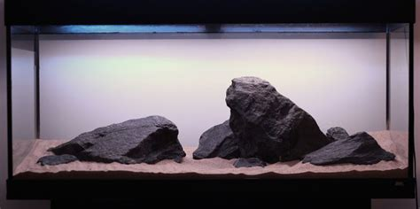 mbuna aquascape 54 best images about malawi on pinterest malawi cichlids