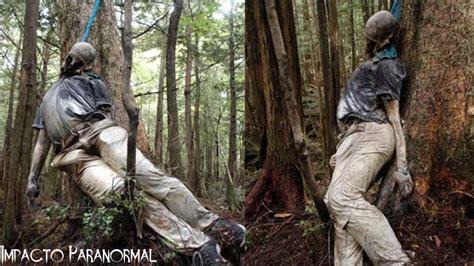 bosque aokigahara el bosque de los suicidios malditos el bosque de los suicidios aokigahara jap 243 n youtube