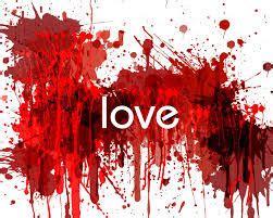 menikah  perjuangan mencari jodoh  cinta sejati