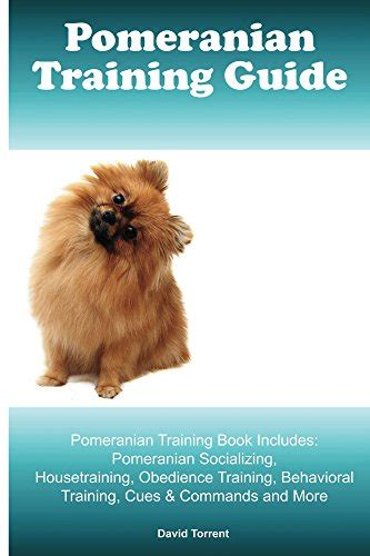 are pomeranians prone to seizures the pomeranian infobarrel