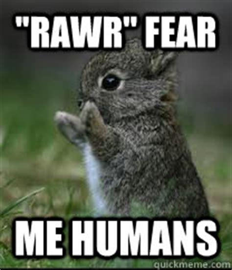 Rawr Meme - fierce bunny memes quickmeme