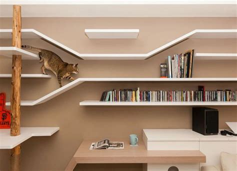 wall shelves pet furniture design idea to cats