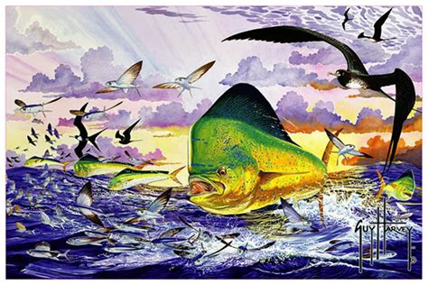 top guy harvey dolphin painting wallpapers