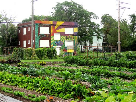 city farming a how to guide to growing crops and raising livestock in spaces books 10 detroit farms rooting goodness into the city