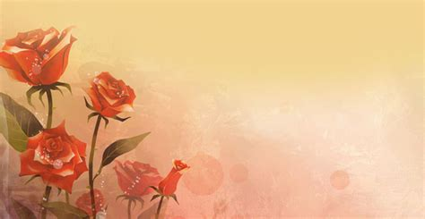 background design for email flowers email stationery stationary romantic red roses