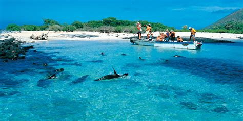 galapagos best islands is there a best time to visit galapagos islands climate