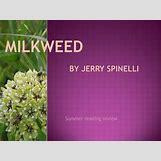 Milkweed Book Misha   720 x 540 jpeg 38kB