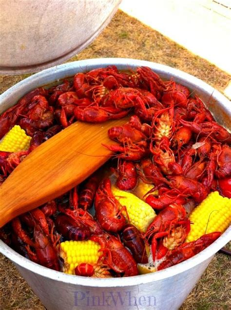 Sleeping With The Crawfish 100 seafood boil recipes on shrimp dishes