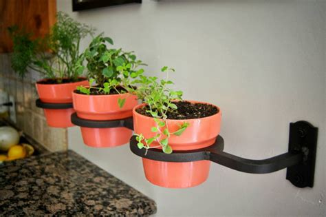 amazingly creative herb planters lydi  loud
