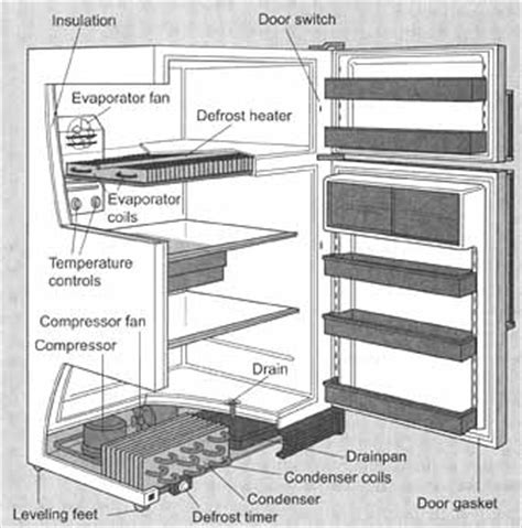 what temperature should the freezer section of a refrigerator be metagenome the home appliance troubleshooting repair blog
