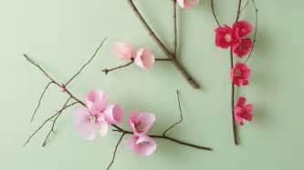 Paper Flower Templates Martha Stewart by 8 Petal Flower Template