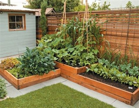 Fabulous Wonderful Small Backyard Vegetable Garden Ideas Small Backyard Vegetable Garden Ideas