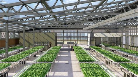 greenhouse layout electronic city carrot city nyc rooftop greenhouses