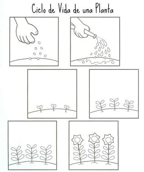 imagenes de relaciones temporales recursos y actividades para educaci 211 n infantil con los que
