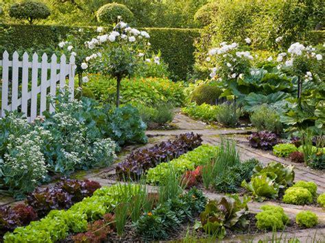 edible backyard plants geometric vegetable garden hgtv