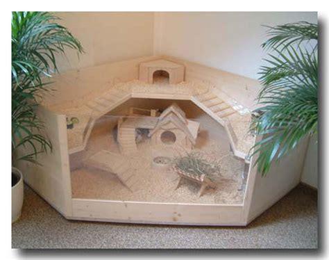 meerschweinchen und kaninchen in einem stall bauanleitung luxus k 196 fig f 252 r meerschweinchen kaninchen aus
