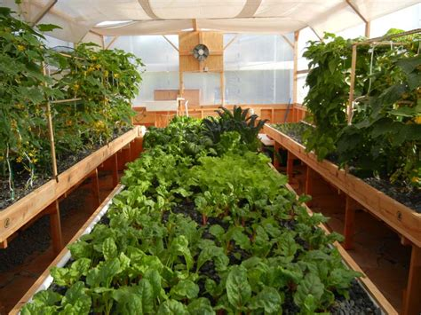 backyard growing system buy a portable farms 174 aquaponics system grow your own food
